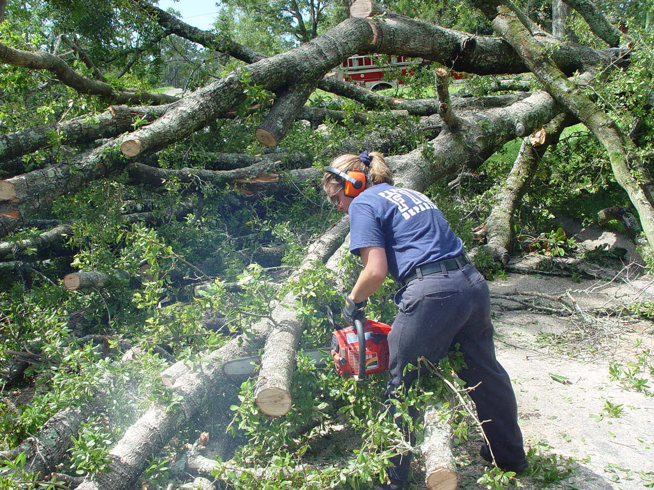 Worker cuts up a tree after a tornado